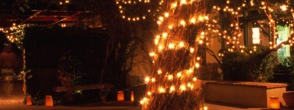 46930e3cd9ec584ad6cf2c5a6767b3a8 - Tucson Botanical Gardens Luminaria Night 2019