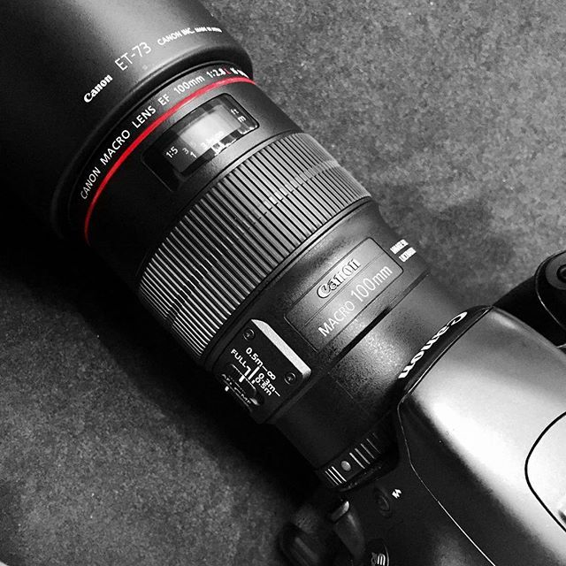 Getting to know my newest lens at a fantastic business conference.  // #100mm #teamcanon #photography #freedomfounders