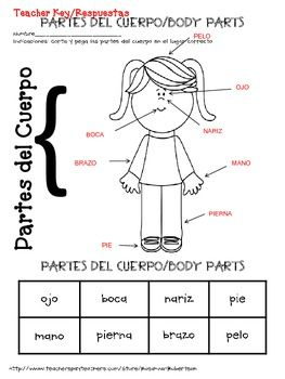 FREE ~ SPANISH: Girl and Boy Body Parts | Spanish | Spanish