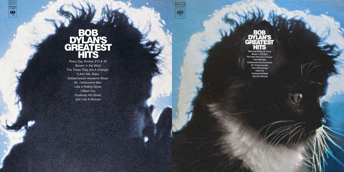 Famous Album Covers Recreated As Cat Photos Famous Album Covers Album Covers Album