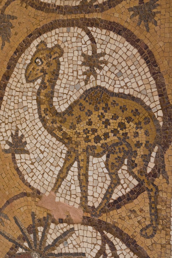 hot product preview of in stock Byzantine floor mosaic on northern aisle of Petra Church in ...