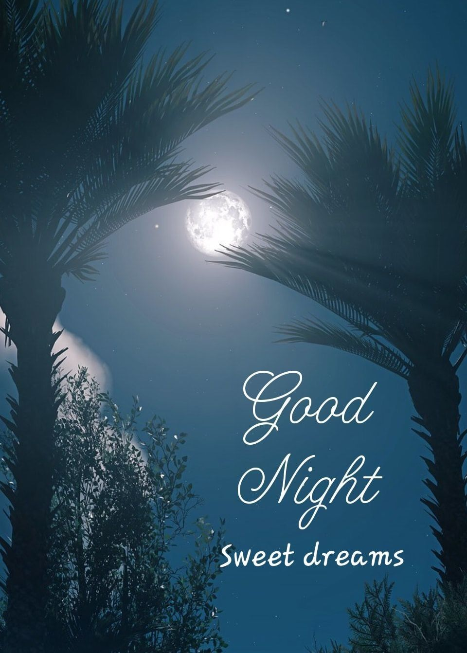 Good Night Quote Good Night My Love Best 40 Good Night Message To My Love Good Night My Love Goo Good Night Love Images Good Night Image Good Night Images Hd