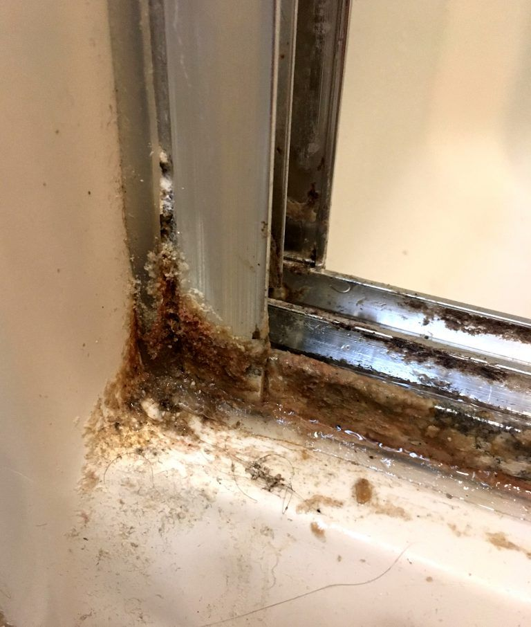 How To Clean Your Shower Doors With Two Simple Ingredients