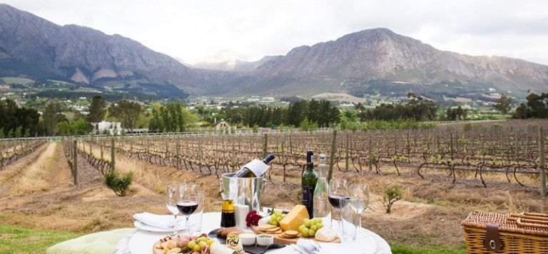 23 Of The Best Pre Ordered Picnics In The Cape Winelands Picnic