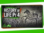 With the non-avian dinosaurs extinct, it was time for mammals to take over. Fina...,  #Dinosa... #historyofdinosaurs
