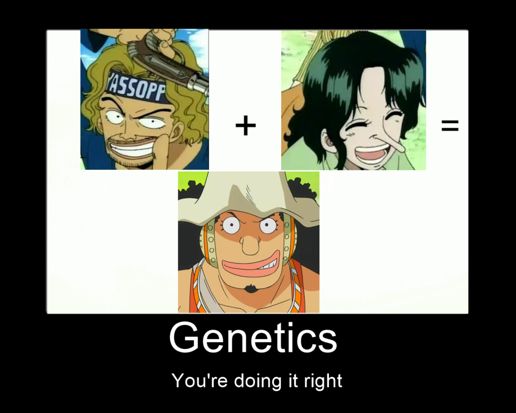 One piece Usopp heredity meme pointing this out its