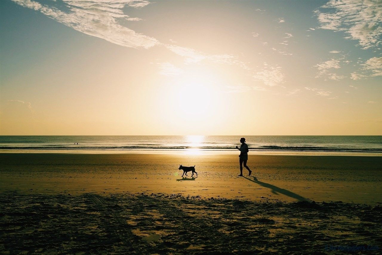 Walking under the Sunset with my big dog - http://shootbar.com/walking-under-the-sunset-with-my-big-dog/