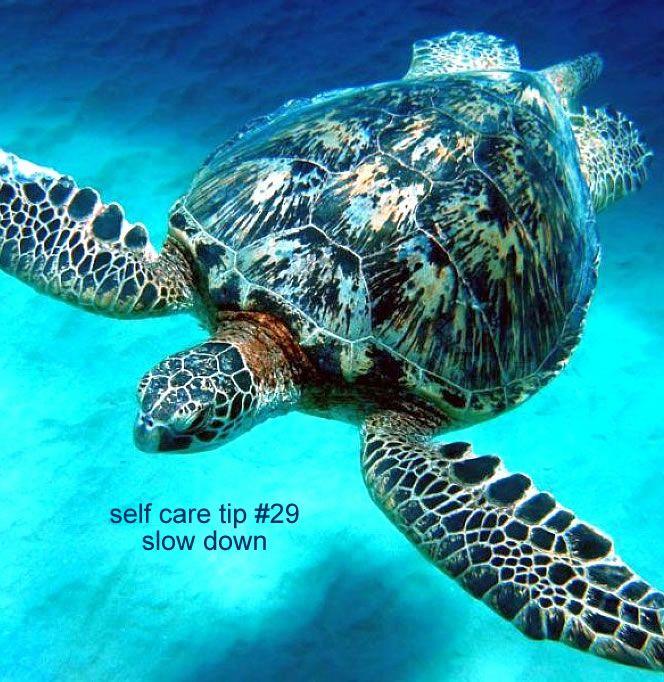 RELAXATION MASSAGE https://www.ripplemassage.com.au/massage/bliss-massage-relaxation/ #relaxationmassage #swedishmassage #relax #relaxation #mobilemassage #inhomemassage