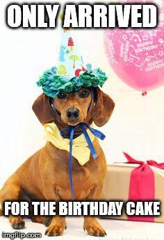 Top 100 Original And Funny Happy Birthday Memes Funny Birthday