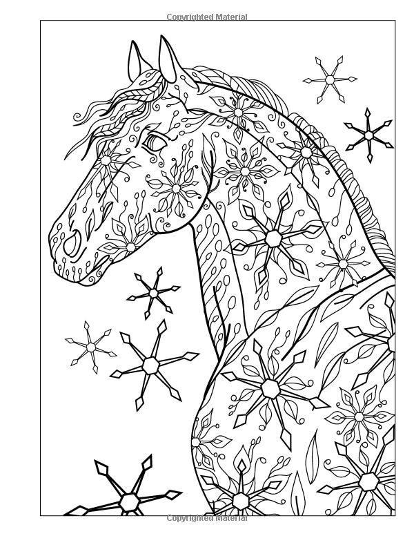 Amazon.com: El maravilloso mundo de los caballos - caballo adulto ...