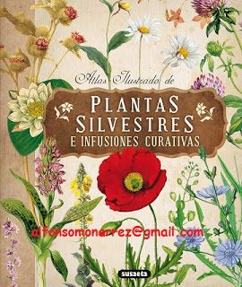 LIBROS MEDICINA: PLANTAS SILVESTRES E INFUSIONES CURATIVAS ATLAS IU...
