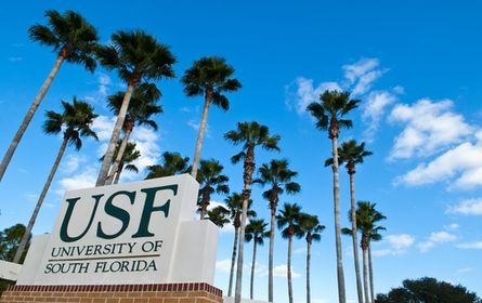 university of south florida best college us news physical  university of south florida best college us news