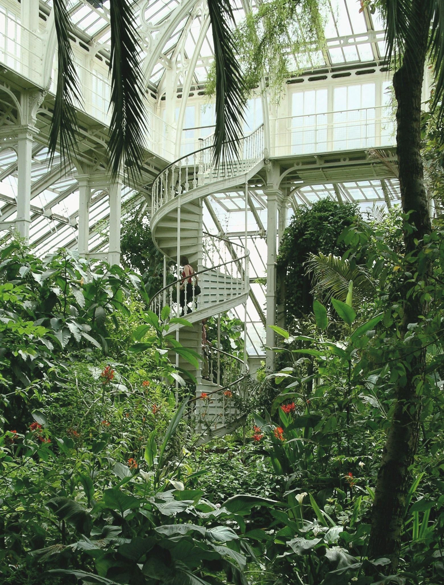 More pics of the Temperate House, Kew Gardens. my dream house! #botanicalgardens