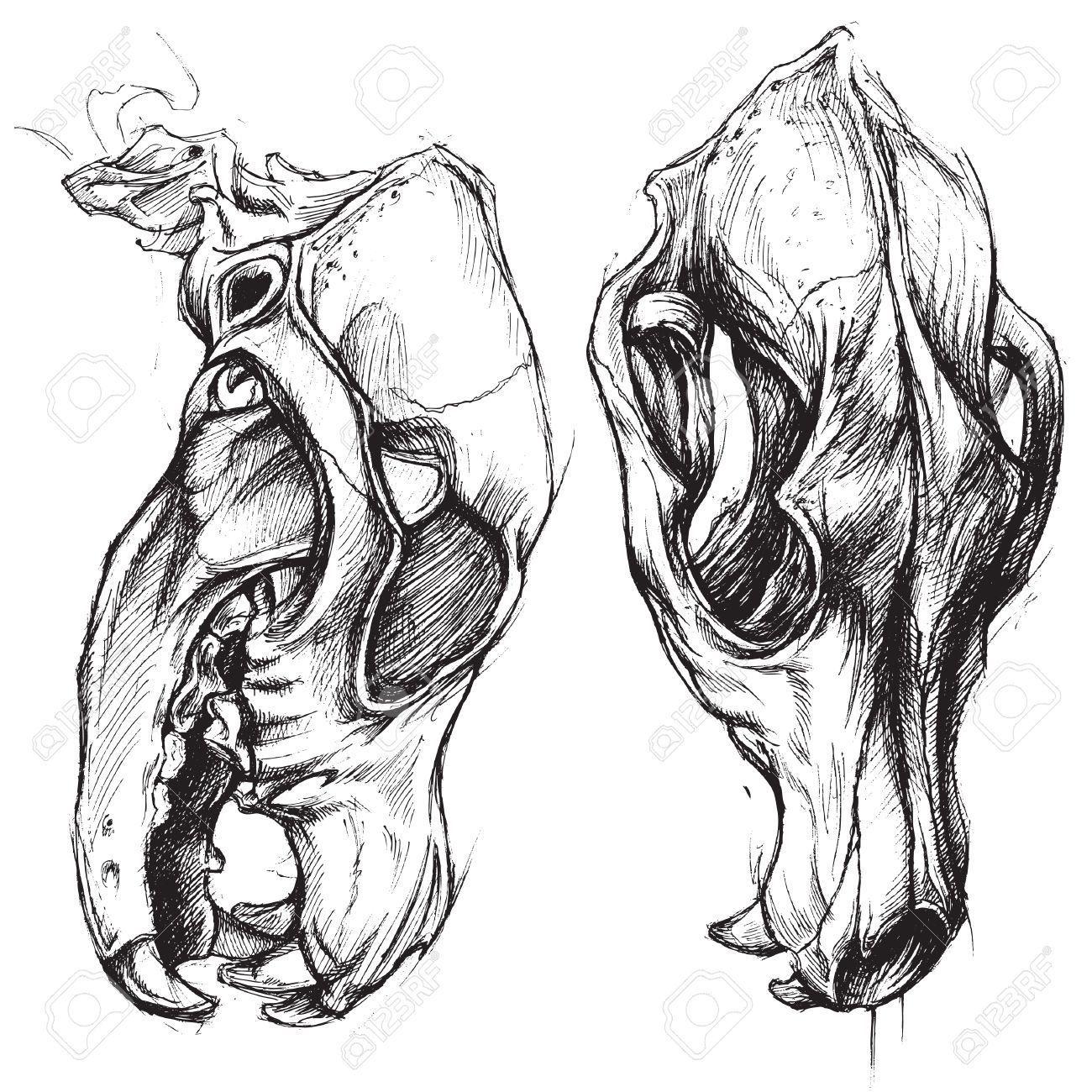Skull dog | Татуировки с собакой, Картинки с черепами ...