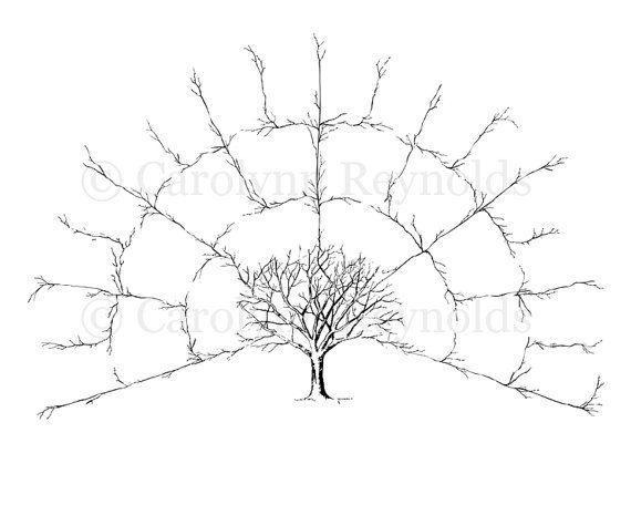 BLANK 4 Generation Family Tree Fan Chart { Digital File Only - blank family tree