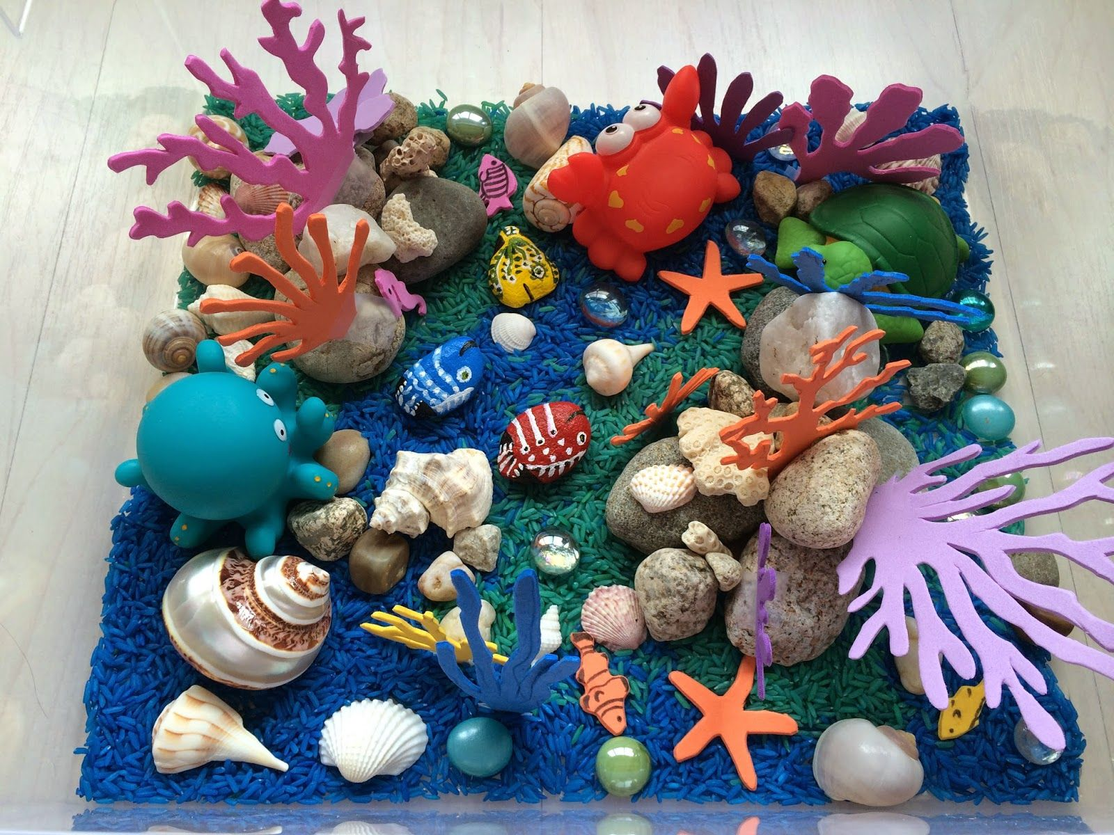 Image Result For Coral Reef Projects Coral Reef Biome