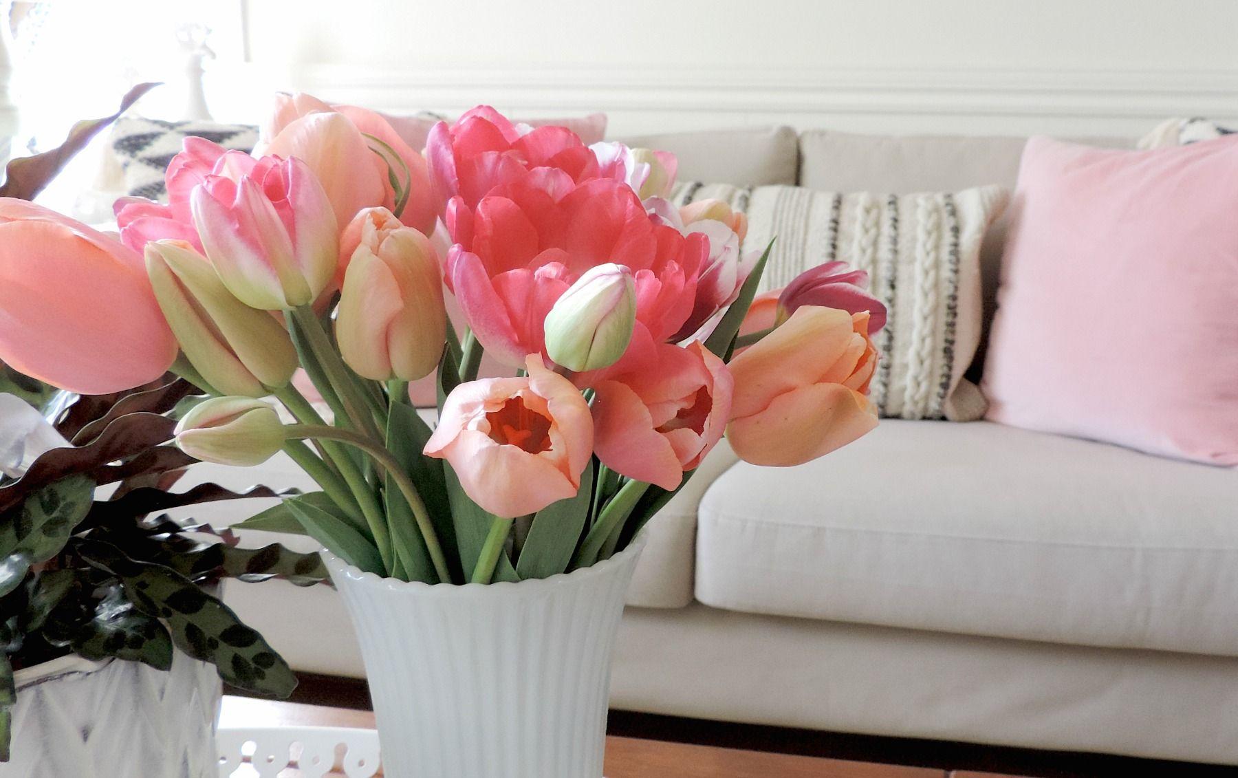 À propos de moi Planting flowers, Throw pillows, Flowers