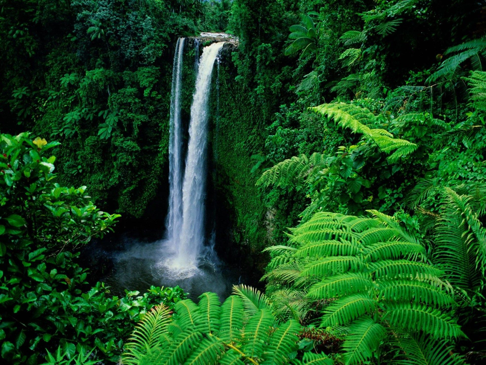Waterfall Hd Wallpapers 1080p High Quality Waterfall Wallpaper Waterfall Beautiful Waterfalls