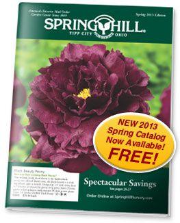 Spring Hill Nursery Spring Hill Nursery Garden Catalogs Spring Hill