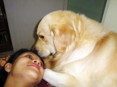 homeopathic remedy for dog ear infection