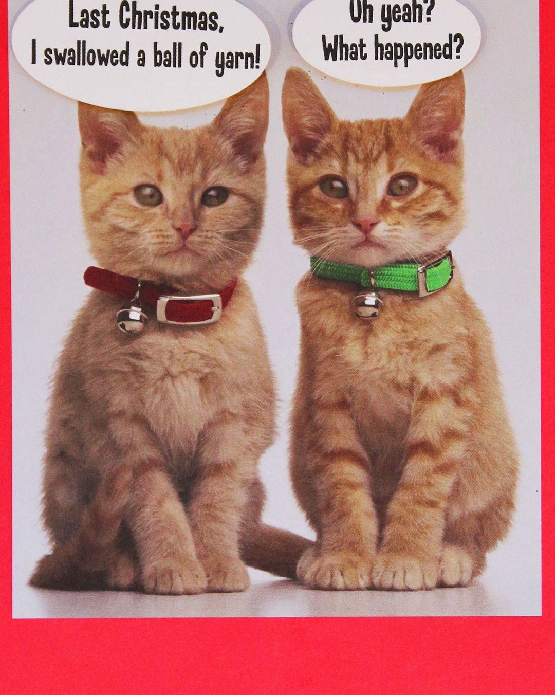 Happy Catsmess! 🐱caturday christmascards funny card