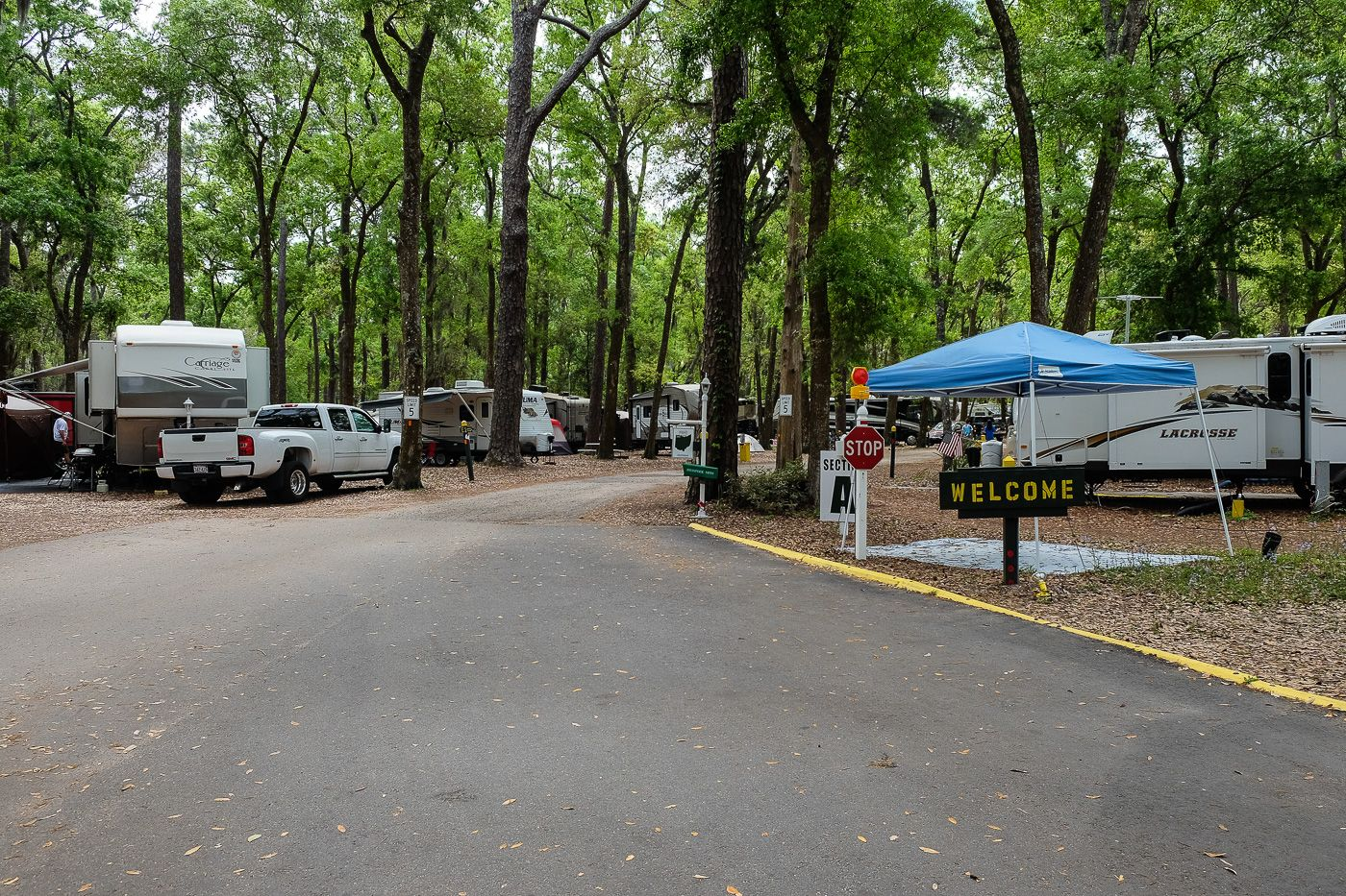 Jekyll Island Campground Review: Location, Location ...