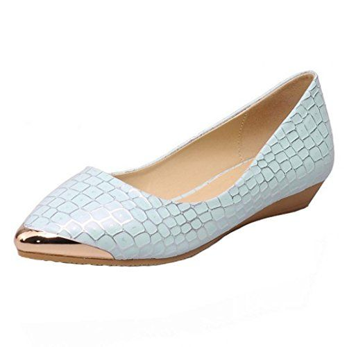 Hee Grand Women Pointed Patent-leather Flat Pumps UK 4.5 Blue Hee Grand http://www.amazon.co.uk/dp/B00LUGU7WE/ref=cm_sw_r_pi_dp_BMMtub14R9DCJ