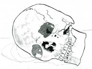 image result for skulls 3 4 view awards designs pinterest
