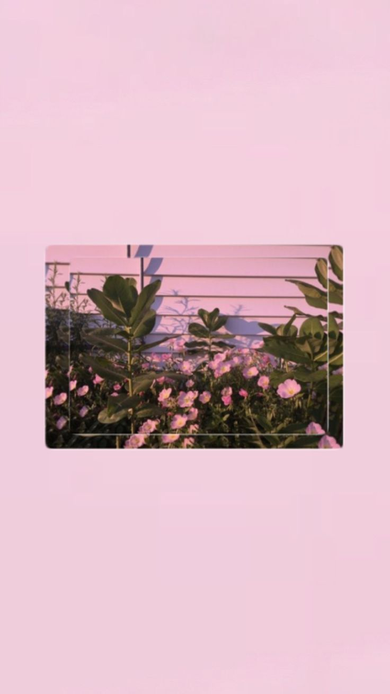 İphone Wallpapers> Pinterest : esina1 - #esina1 #phone #pinterest #wallpap.... - Tumblr - Wallpaper