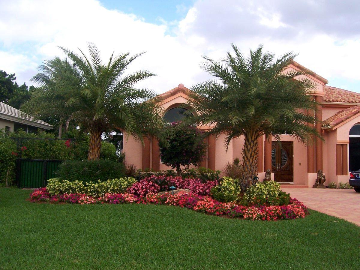 Florida Homes Landscape 50 Best Florida Luxury Houses Page 100 Of 100 Florida Luxury Waterfron Florida Landscaping Palm Trees Landscaping Front Yard Decor