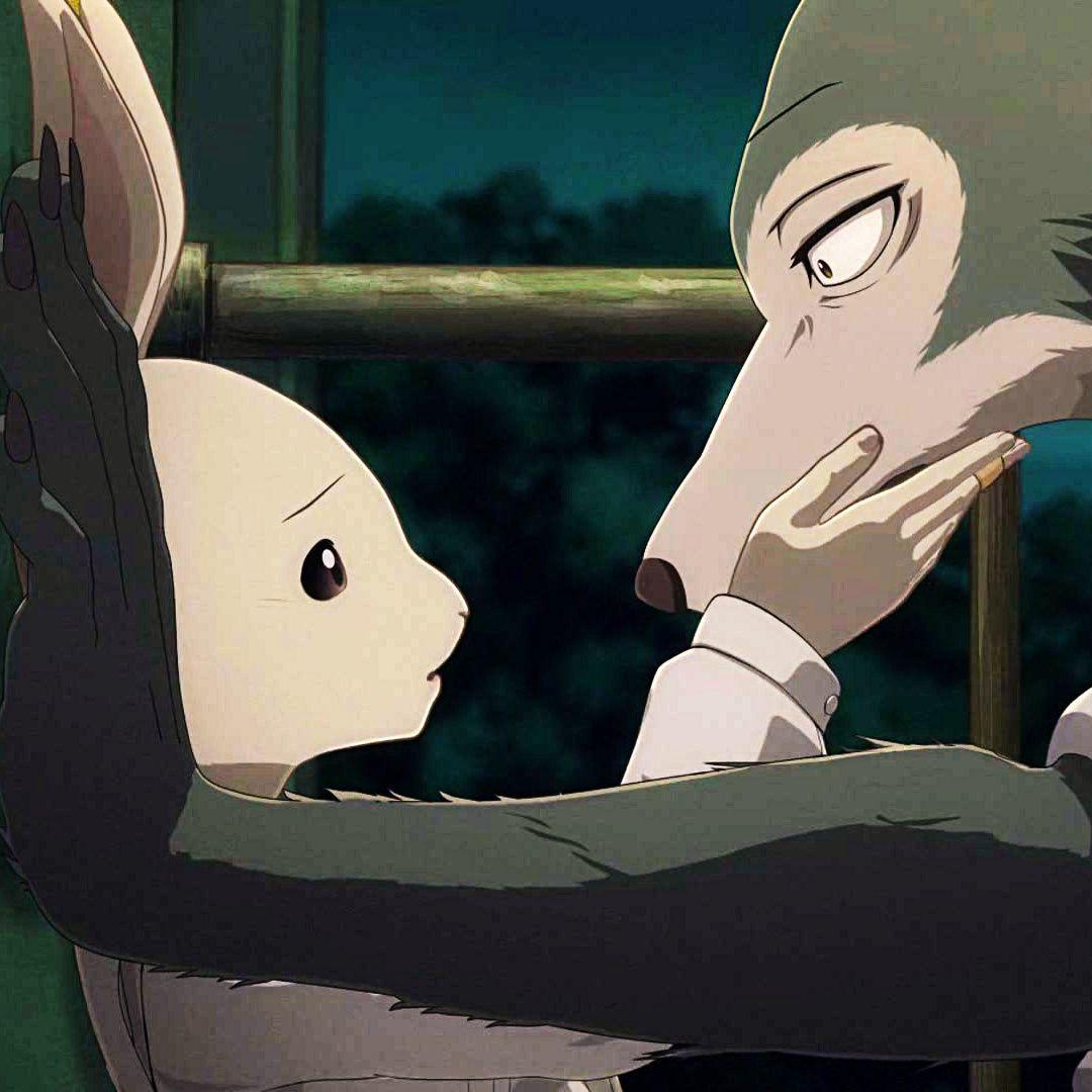 Beastars season 2 episode 3 discussion gallery anime