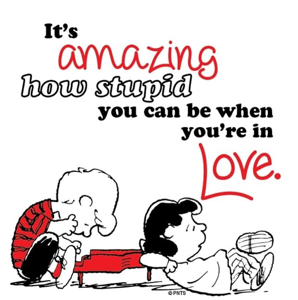 You Re Amazing Love: It's Amazing How Stupid You Can Be When You're In Love