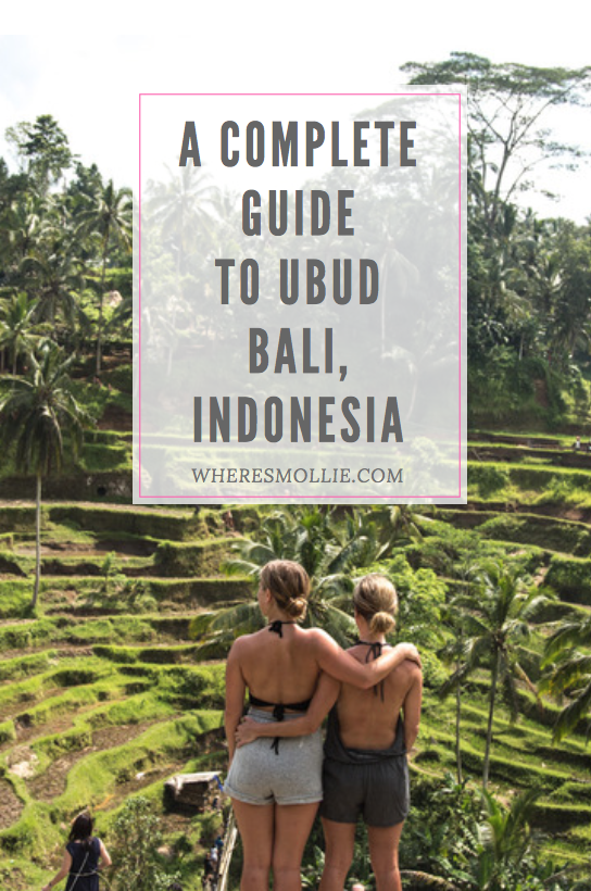Exploring Ubud, Bali Indonesia   Where's Mollie? A Travel and Adventure Lifestyle Blog