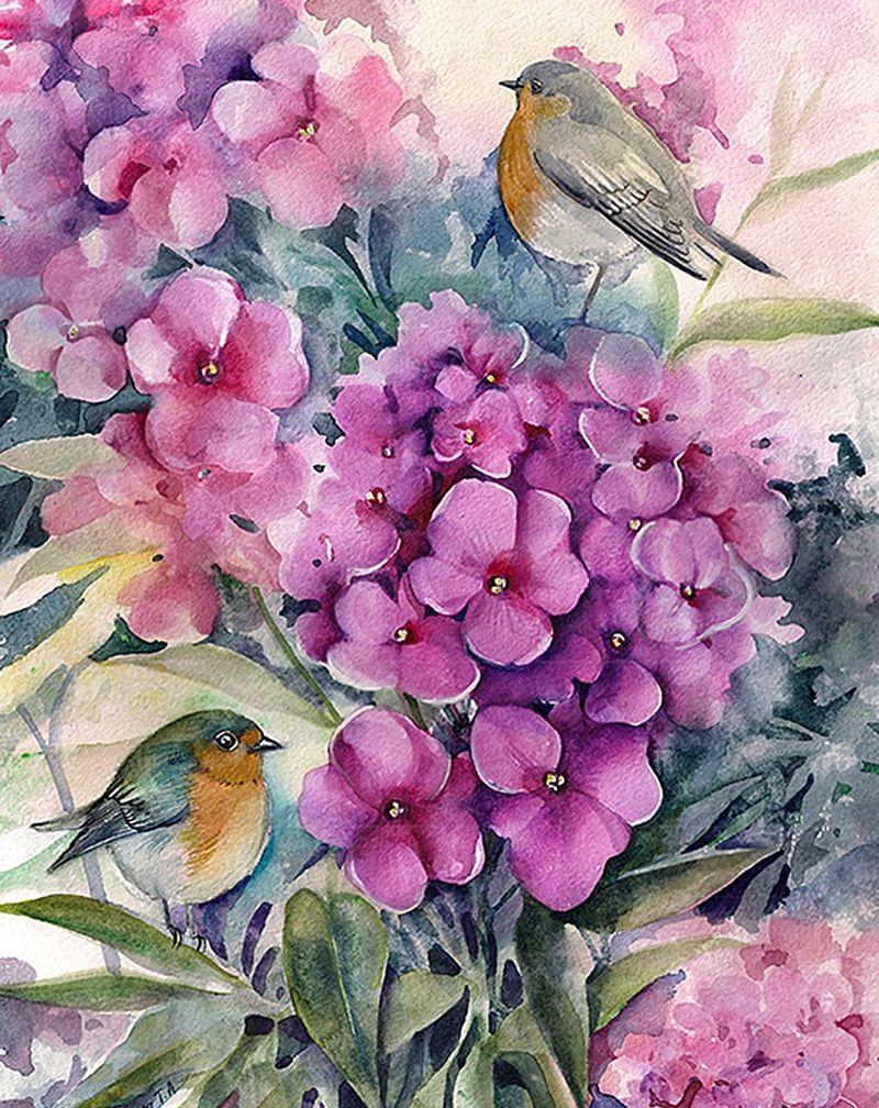 акварель птицы цветы картинки очень хочу