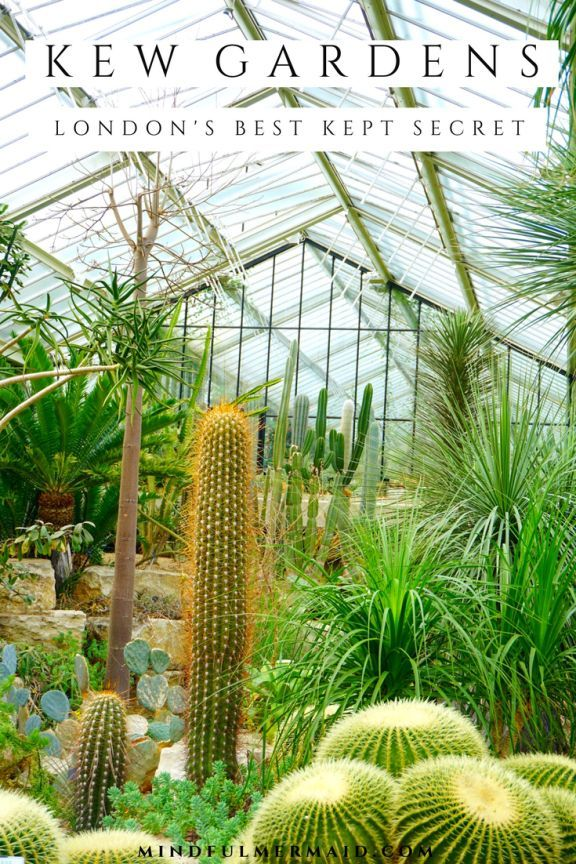 46a30f7cdbfa84fcd7c26dee027bae8f - Best Day To Visit Kew Gardens