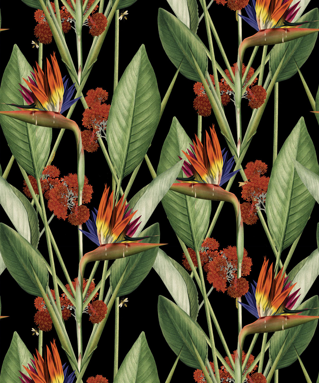 Birds Of Paradise Wallpaper • Bold Large Scale Floral