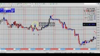 Binary Options Trading Online Trading Learning Online Business