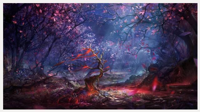 Dream Forest Wallpaper