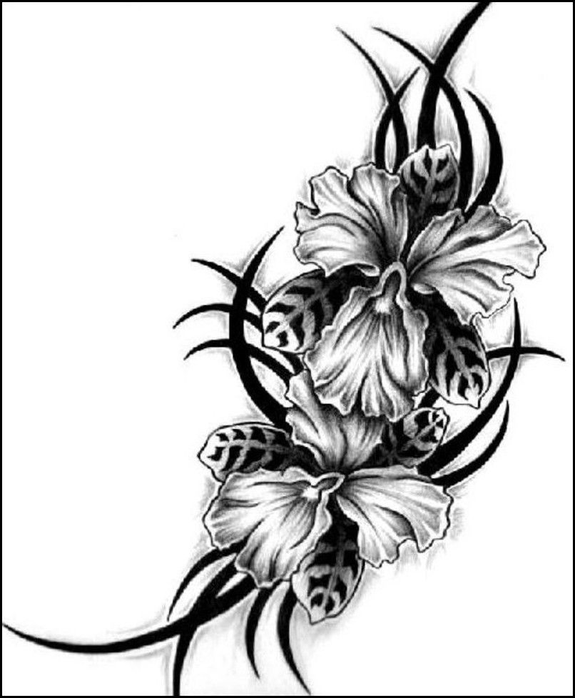 Inspirations And Ideas Hawaiian Flower Tattoo For Womantattoo Themes