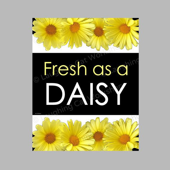 Fresh as a Daisy-- perfect for a dorm bathroom! | Dorm Decor ...