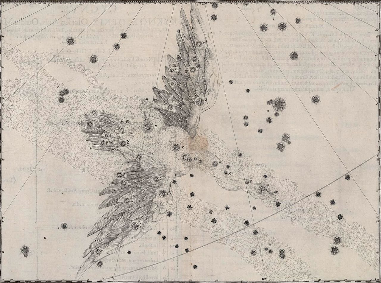 The Cygnus Constellation In Bayer S Atlas