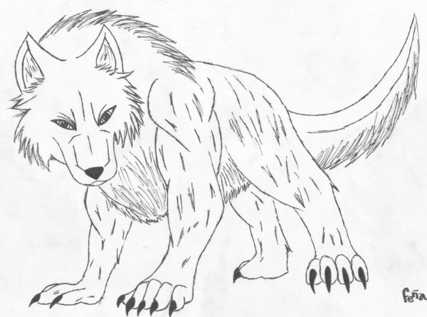 Wolf Images To Color