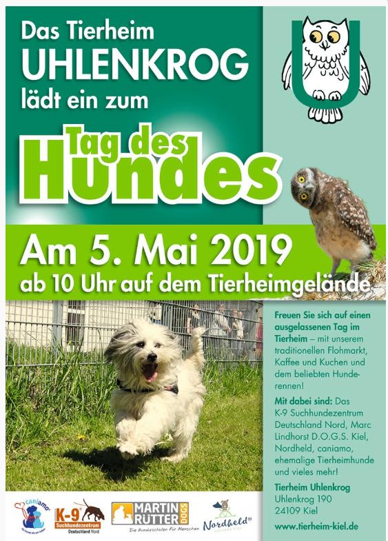 Tag Des Hundes Tierheim Tiere Hunde