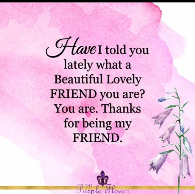 Thank You For Being A Friend Friends Journal