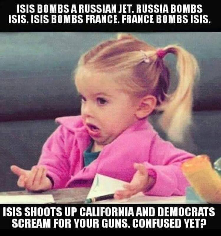 46a79695690c26dc4c192339b9bd2020 why obama's unconstitutional gun control is sick [meme] the