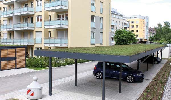 Dachbegrünung Am Siebau Carport Ideen Rund Ums Haus Pinterest