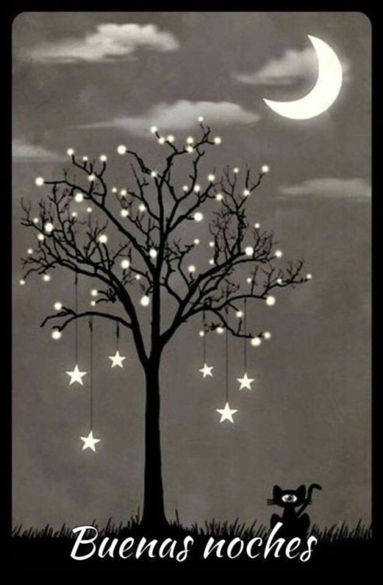 Buenas Noches imagenes Pinterest | Postales de buenas noches, Buenas noches,  Fotos buenas noches