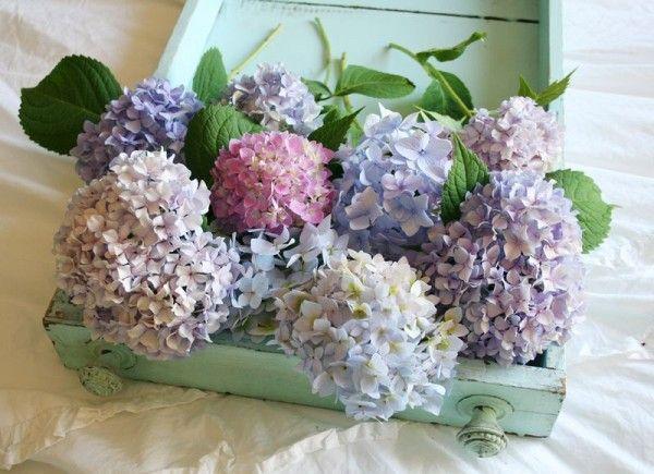 Hortensias de colores decoraci n con hortensias - Decoracion con hortensias ...