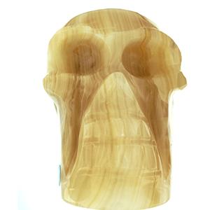 Amber Aragonite Skull