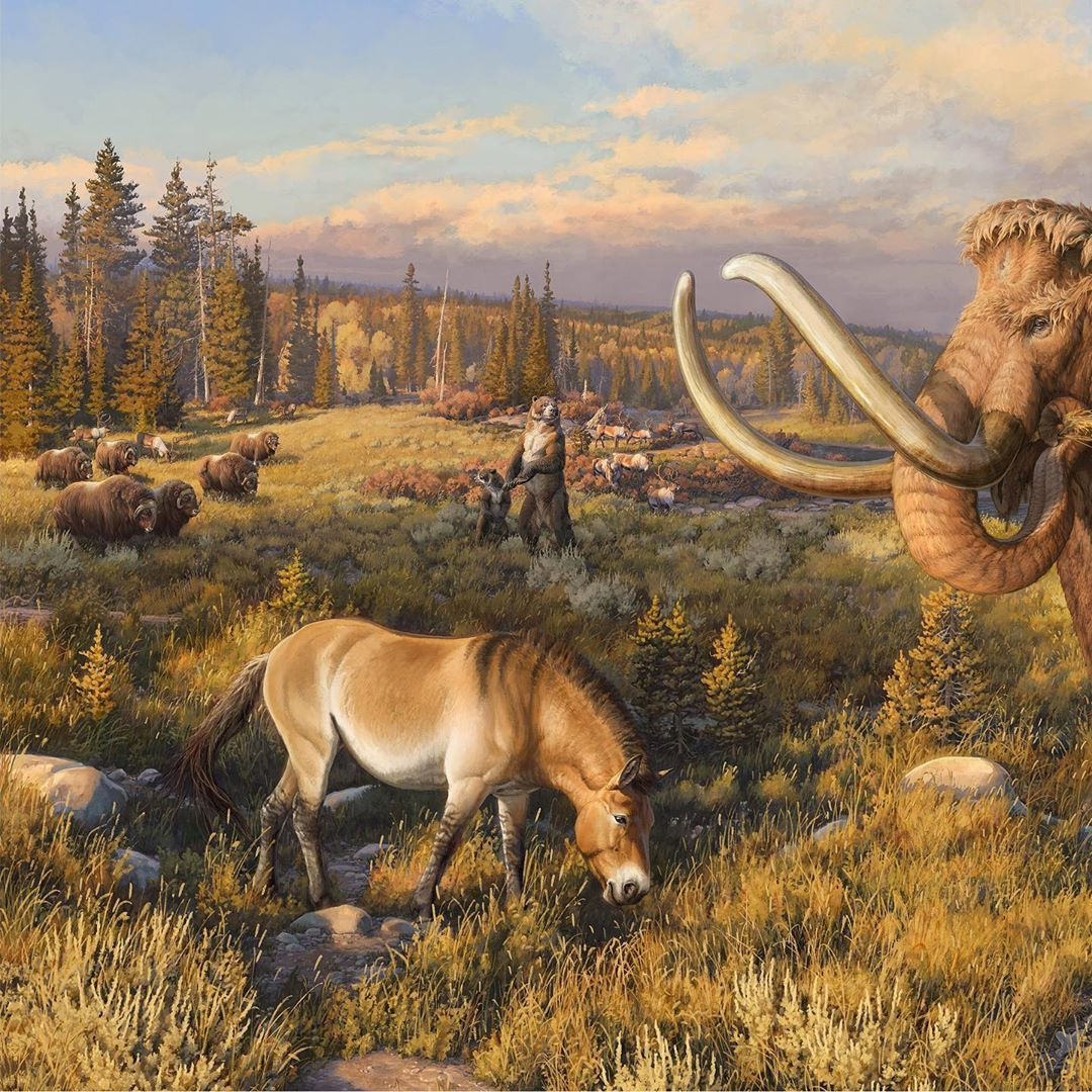 Pin By Tyrill Berry On Prehistoric North America With